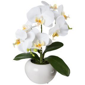 Orchidee weiß, 35 cm, inkl. Keramikschale