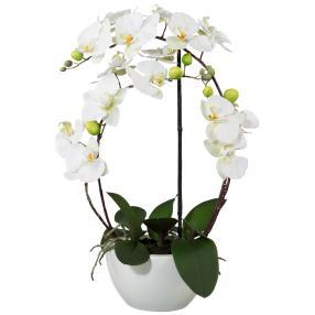 Orchidee im Keramiktopf, weiß, 3D, 52cm