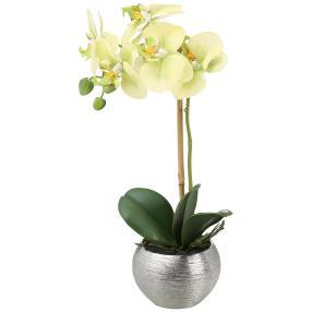 Orchidee im Silbertopf, weiß, 33 cm