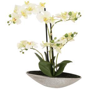 XL-Orchidee, 55 cm, grün