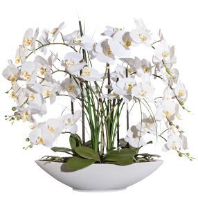 XXL-Orchidee mit Gras, weiß