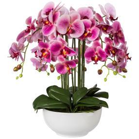 XXL-Orchidee, fuchsia, 54 cm