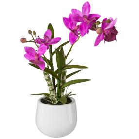 Japanorchidee, fuchsia, 40 cm, real-touch