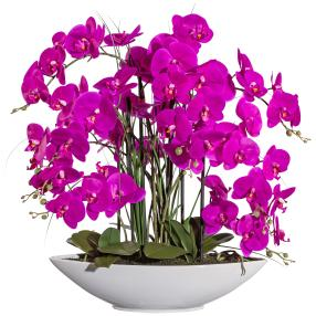 XXL-Orchidee, pink, 70 cm