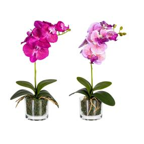 Orchidee 2er-Set, lila-flieder