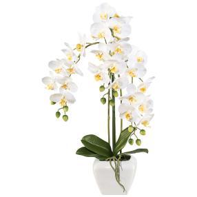 Orchidee im Topf, weiß, 57 cm