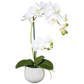 Orchidee im Keramiktopf, weiß, 48cm