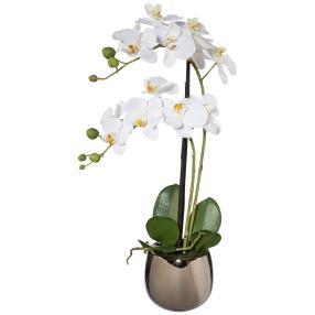 Orchidee weiß, 52 cm, inkl. Silbertopf