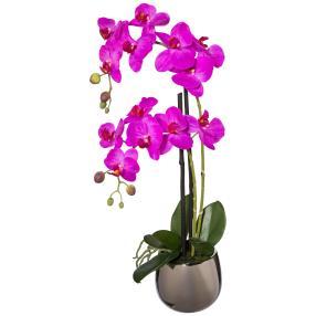 Orchidee lila, 52 cm, inkl. Silbertopf