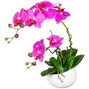 Orchidee lila, in Keramikschale