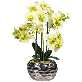Orchidee hellgrün, ca. 55 cm
