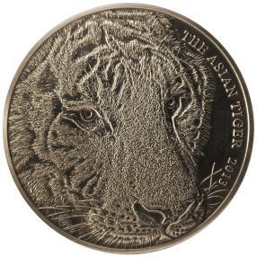 Asiatischer Tiger Silbermünze