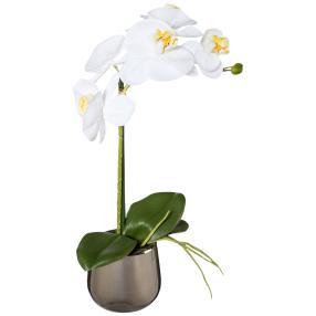 Orchidee weiß 39cm im Silbertopf