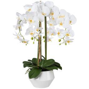 Orchidee weiß 67 cm in Keramiktopf
