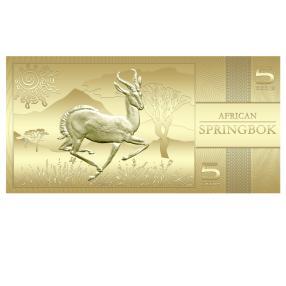 Goldbanknote Springbok