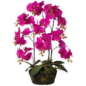 Orchidee im Moosballen lila 70cm