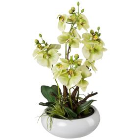 Orchideen-Arrangement grün, 46 cm