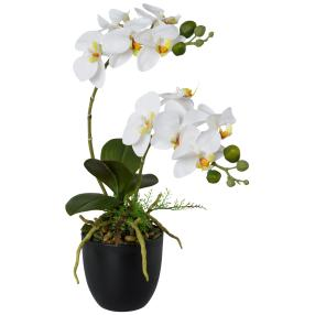 Orchidee 42cm realtouch weiß im Topf