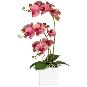 Orchidee dunkelrosa 55cm
