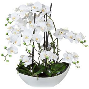 Phalaenospis-Arrangement weiß, ca. 68 cm