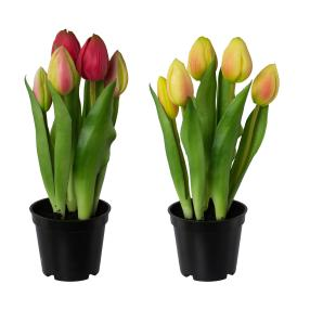 Tulpen im Topf pink-gelb 2er-Set 25cm