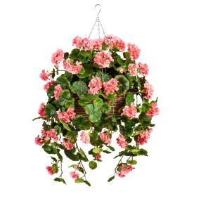 Geranien-Hängampel rosa