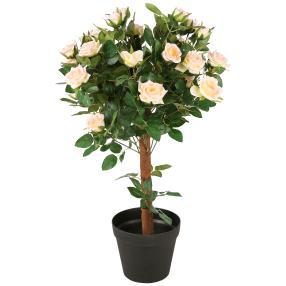 Rosenkugelbaum rosa, ca.  65 cm