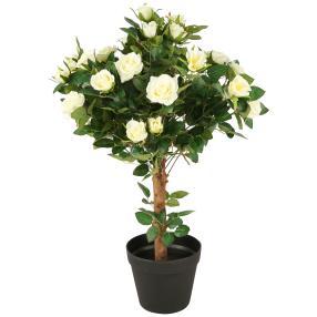 Rosenkugelbaum creme, ca. 65 cm