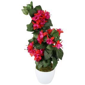 Fuchsien 2er Set, rot-lila, 40 cm