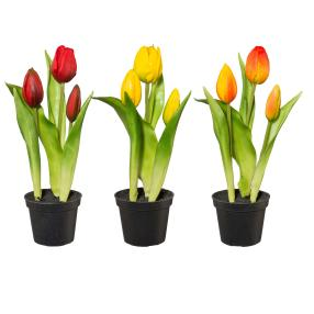 Tulpen 3er Set, rot-gelb-orange