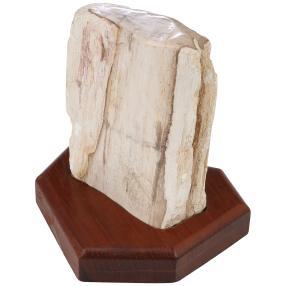 Darimana Skulptur fossiles Holz 15 cm