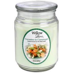 Willow Lane Duftkerze Melone & Gurke