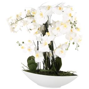 XL-Orchidee 70 cm, weiß, inkl. Keramikschale