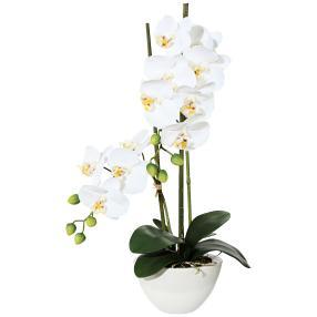 Orchidee 50 cm weiß, im Keramiktopf