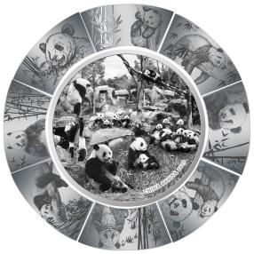 Panda-Puzzle Münze