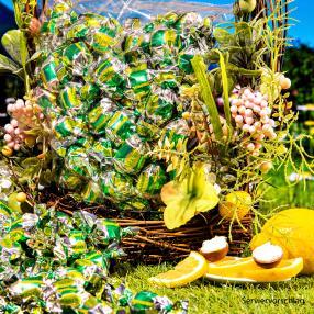 CRISPO Praline Limone