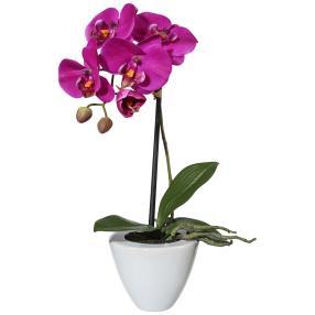 Orchidee im Keramiktopf 36cm lila