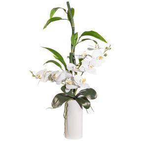 Orchideen-Bambus-Arangement, ca. 66 cm