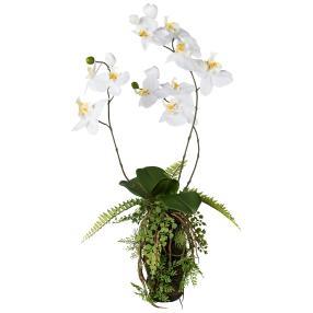 Orchideen-Farn Arrangement weiß 63cm