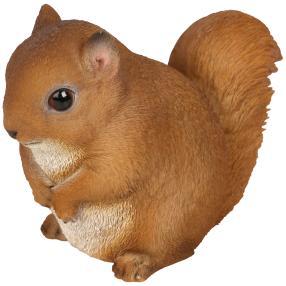 Zauberwelt Mini-Eichhörnchen