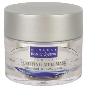Mineral Beauty System Reinigende Schlamm-Maske