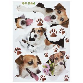 Dekosticker Hunde, weißer Hintergrund 50x70 cm