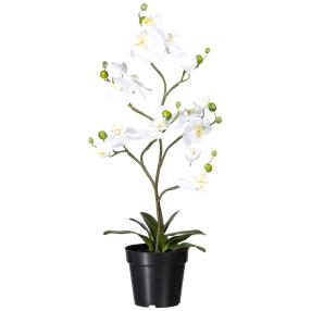 Orchidee weiß, 75 cm, real-touch