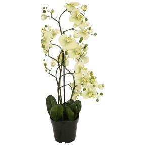 XL-Orchidee hellgrün, 90 cm