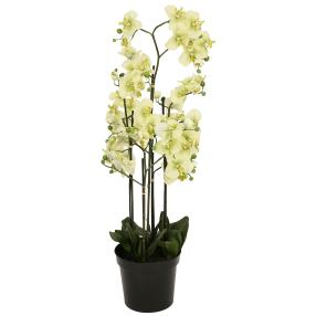 XXL-Orchidee hellgrün, 130 cm, real-touch