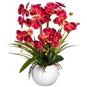 Orchidee pink, inkl. Keramiktopf, 58 cm