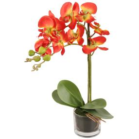 Orchidee im Glas, orange 52 cm
