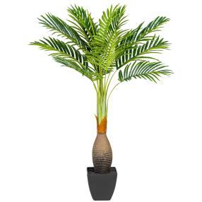 Kentiapalme im Topf, 100 cm