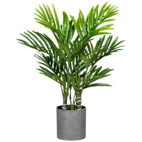 Mini-Kentiapalme im Topf, 55 cm