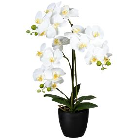 Orchidee real-touch, 65 cm, weiß